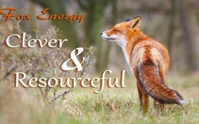 The Power of Fox Spirit Energy
