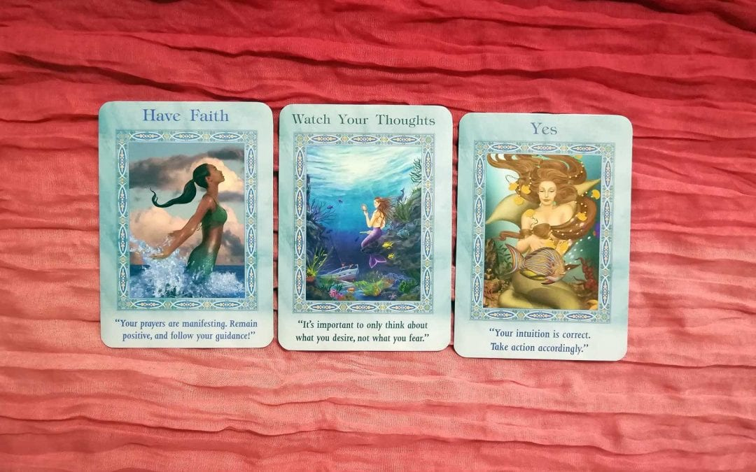 Weekly Energy Reading – 11/20/19 through 11/26/19